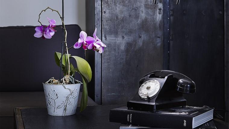 机に置かれている紫色の胡蝶蘭