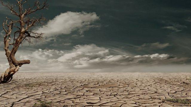 乾燥した大地
